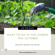 What To Do In The Garden This October