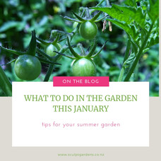 What To Do In The Garden This January | Top Garden Ideas