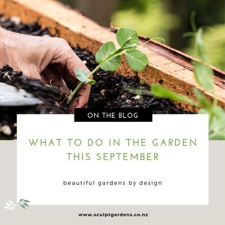 what to do in the garden this september