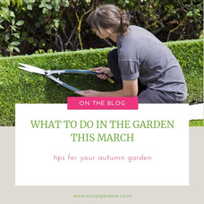 What To Do In The Garden This March
