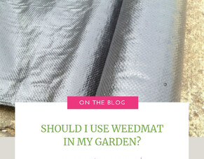 Should I Use Weedmat In My Garden?