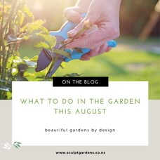 What To Do In The Garden This August