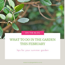What To Do In The Garden This February